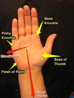 paddle grip palm guide