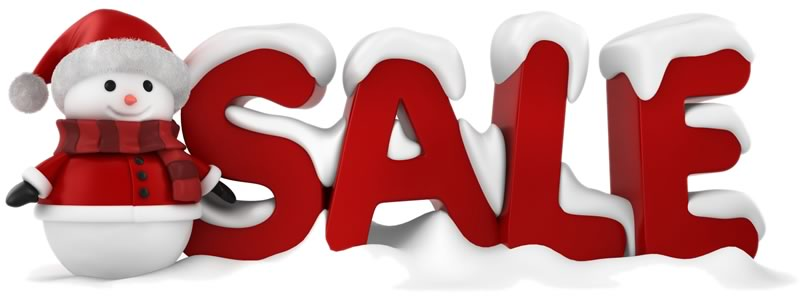 winter and new year pickleball sales